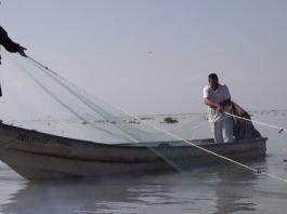 La pesca frente a la acuicultura en la ribera de Chapala