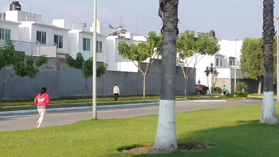 Coto Bonanza, Tlajomulco