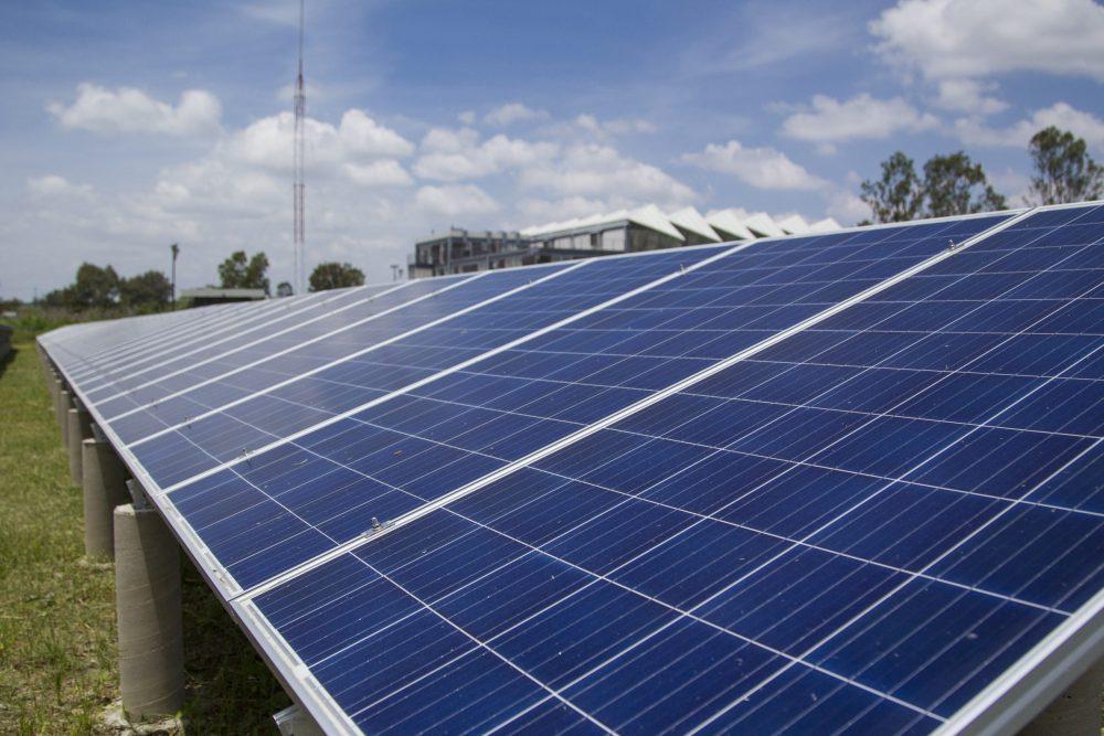 Celdas fotovoltaicas. Foto: Fernanda Velázquez