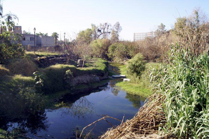 Parque Laboratorio CUCSH Cañada Enrique Estrada Faudón